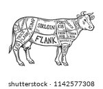 meat diagram cow engraving... | Shutterstock .eps vector #1142577308