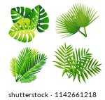 set of tropical green leaves.... | Shutterstock .eps vector #1142661218
