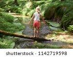 child cute blond girl playing... | Shutterstock . vector #1142719598