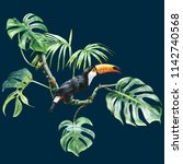 tropical. toucan in leaves | Shutterstock . vector #1142740568