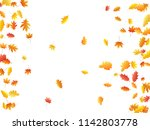 oak and maple leaf beautiful... | Shutterstock .eps vector #1142803778