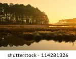 Golden Sunrise At Salt Marsh  ...