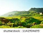 hilly landscape with morning... | Shutterstock . vector #1142904695