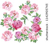 set of flowers bouquets with...   Shutterstock . vector #1142905745