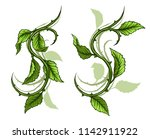 graphic cartoon detailed green... | Shutterstock .eps vector #1142911922