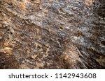 tropical tree bark texture...   Shutterstock . vector #1142943608