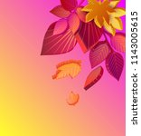 pink and yellow spectrum autumn ... | Shutterstock .eps vector #1143005615