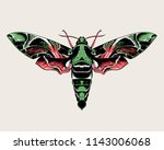 oleander hawk moth  daphnis... | Shutterstock .eps vector #1143006068
