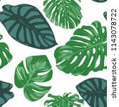 seamless hand drawn botanical... | Shutterstock .eps vector #1143078722