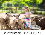 child feeding wild deer at... | Shutterstock . vector #1143141758