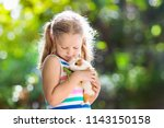 child playing with guinea pig.... | Shutterstock . vector #1143150158