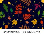 falling autumn leaves. colorful ... | Shutterstock .eps vector #1143202745