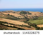 panoramic view of olive groves... | Shutterstock . vector #1143228275