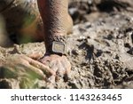 durable smart watch watches in... | Shutterstock . vector #1143263465