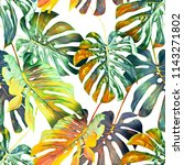 monstera leaves seamless... | Shutterstock . vector #1143271802