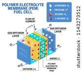 fuel cell diagram. vector.... | Shutterstock .eps vector #1143273512