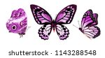 Set With Three Butterflies ...
