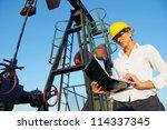 businesswoman with a notebook... | Shutterstock . vector #114337345