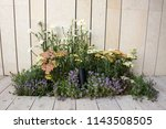 garden flower bed design before ... | Shutterstock . vector #1143508505