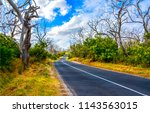rural country road landscape.... | Shutterstock . vector #1143563015