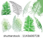 vector drawing of set with... | Shutterstock .eps vector #1143600728