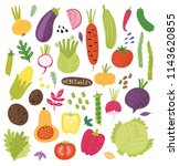 vegetables vector set | Shutterstock .eps vector #1143620855