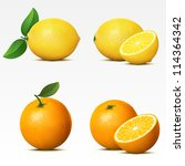 branches,bright,bunch,citrus,collection,cut,delicious,dessert,food,fruit,green,half,illustration,image,isolated