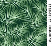 palm. seamless pattern from... | Shutterstock .eps vector #1143645818