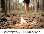 back of a man in black shorts... | Shutterstock . vector #1143653645