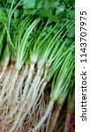 onions and fresh vegetables... | Shutterstock . vector #1143707975