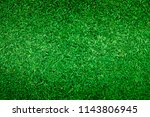 golf courses green lawn pattern ... | Shutterstock . vector #1143806945