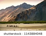 camel riding at hundar village... | Shutterstock . vector #1143884048