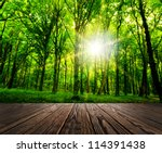 wood textured backgrounds in a... | Shutterstock . vector #114391438