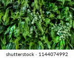 Green Wall Plant