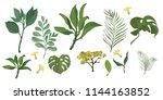 vector designer elements set... | Shutterstock .eps vector #1144163852