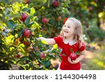 child picking apples on a farm... | Shutterstock . vector #1144304498