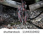 red  black  green cords tangled ...