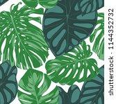 seamless hand drawn botanical... | Shutterstock .eps vector #1144352732