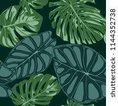 vector tropic seamless pattern. ... | Shutterstock .eps vector #1144352738