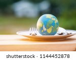globe model placed on plate... | Shutterstock . vector #1144452878