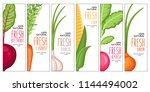 vector farm harvest... | Shutterstock .eps vector #1144494002