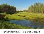 stream at svansele dammaenger ... | Shutterstock . vector #1144505075