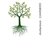 green tree and roots. vector... | Shutterstock .eps vector #1144508555