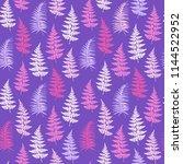 fern frond herbs  tropical... | Shutterstock .eps vector #1144522952