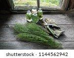 horsetail healing herbs  bottle ... | Shutterstock . vector #1144562942