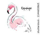 pink flamingo vector...   Shutterstock .eps vector #1144603865
