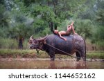 asian country boy lies on the...   Shutterstock . vector #1144652162