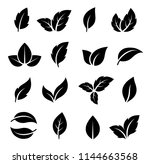 natural set of abstract black... | Shutterstock . vector #1144663568