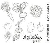 hand drawn vegetables set.... | Shutterstock .eps vector #1144666895