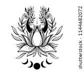 sketch graphic illustration... | Shutterstock .eps vector #1144682072